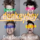 Donkeyboy: Crazy Something Normal
