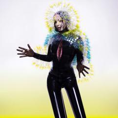 Björk: Vulnicura