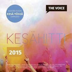 Various Artists: Voicen kesähitti 2015